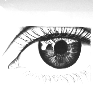 Life-Like Drawings by: Samia Aldalbhi